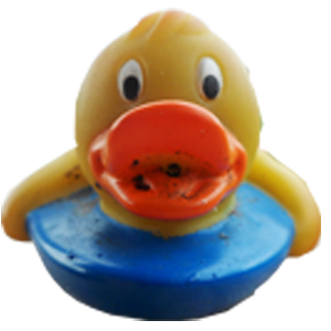 Altrincham rubber duck